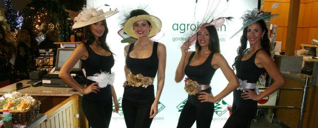 Agro jard n d voile caf cr me magazine marbella for Agro jardin estepona