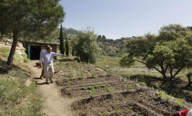Soir d'été aux chandelles à Arboretum Marbella